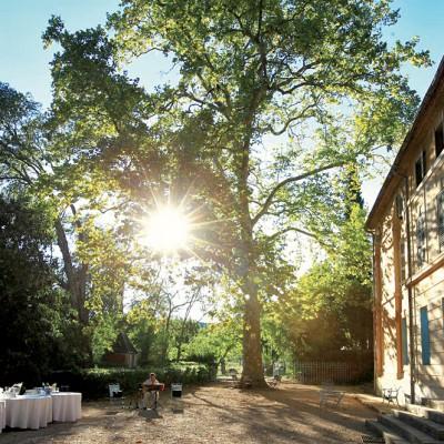 N°1<br/>Dégustation de vins en Provence